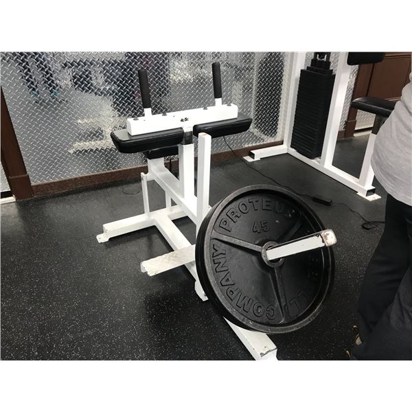 CALF EXTENSION MACHINE WITH APPROX 110LBS WEIGHT 5 PCS