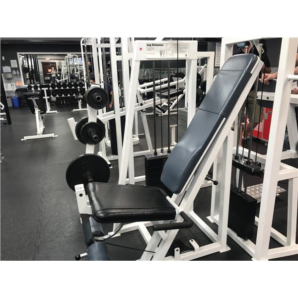 APEX LEG EXTENSION WITH APPROX 230LBS OF WEIGHTS