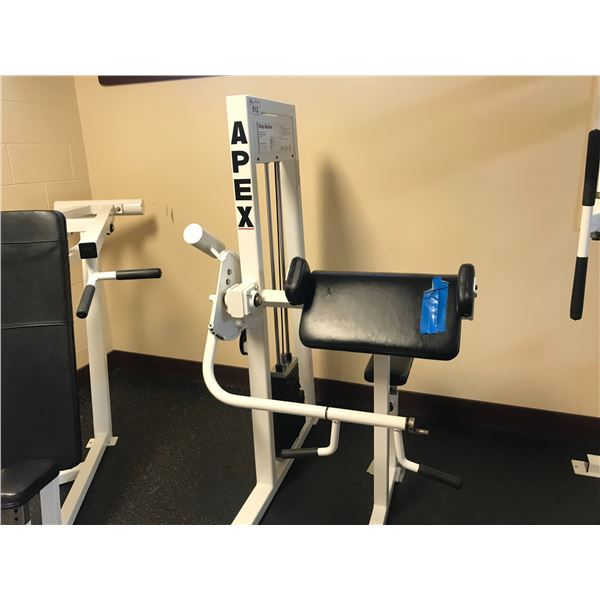 APEX BICEP MACHINE (SOME DAMAGE NOTED ON CUSHION)