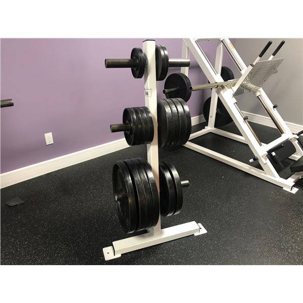 WEIGHT RACK WITH APPROX 405 LBS WEIGHTS