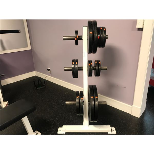 """WEIGHT RACK WITH APPROX 285 LB 2"""" PLATES"""