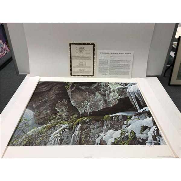 """Robert Bateman """"At the Cliff - Bobcat"""" limited edition #2394/12500 print signed by artist - comes w/"""