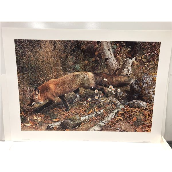 """Carl Brenders limited edition print """"Pathfinder - Red Fox"""" #398/5000 signed by artist - comes w/ COA"""