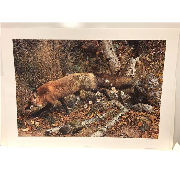 """Carl Brenders limited edition print """"Pathfinder - Red Fox"""" #1932/5000 signed by artist - comes w/ CO"""