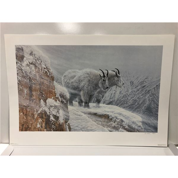 """Ron Parker limited edition print """"Winter's Fury"""" #289/650 signed by artist - comes w/ COA"""