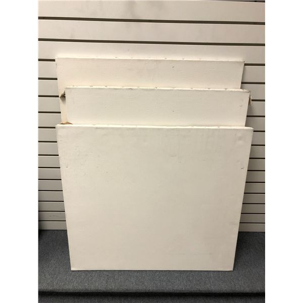 Group of 3 blank canvases/ artist canvas