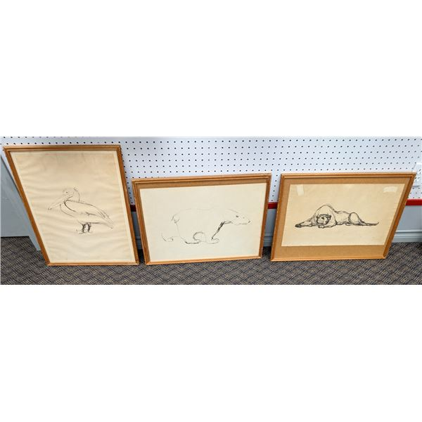 Group of 3 framed pencil sketch drawings - believed to be Swedish artist - Pelican/ Lion/ Polar Bear