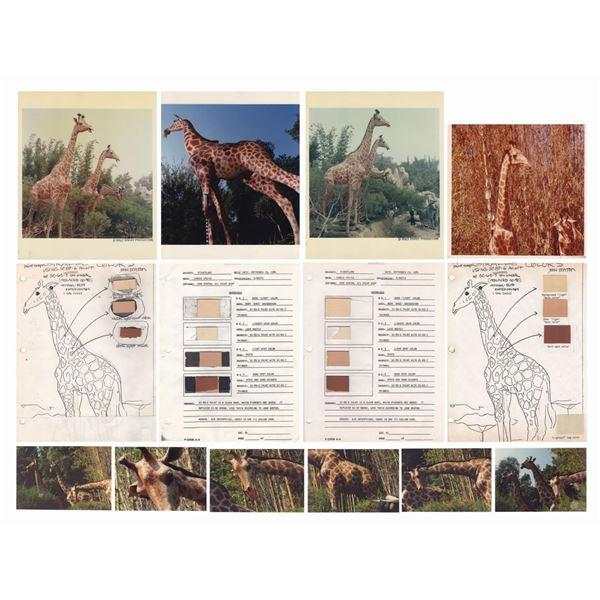 Set of Jungle Cruise Giraffe Color Guides & Photos.
