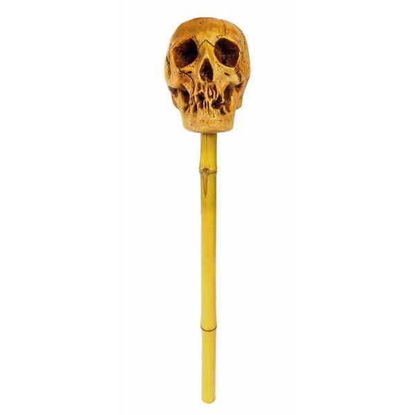 Randotti Large Skull on a Bamboo Post Display.