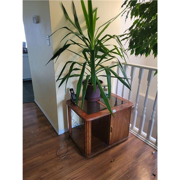 Houseplant - Bedroom Side Table - Telephone.