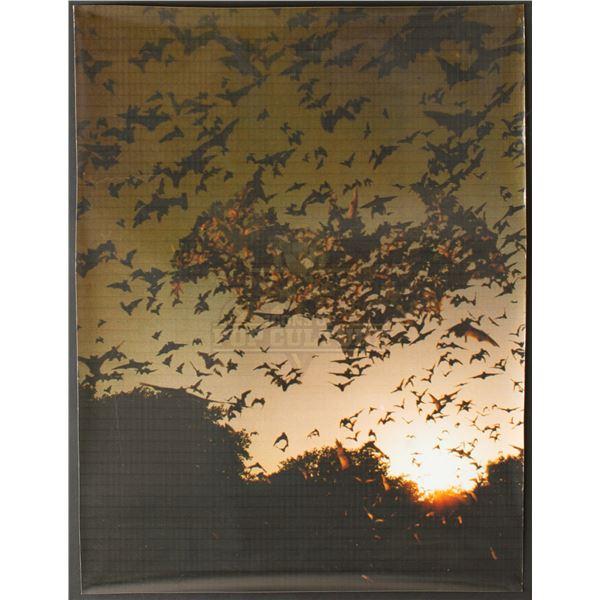 Batman Begins – Original Movie Poster Concept Design – A167