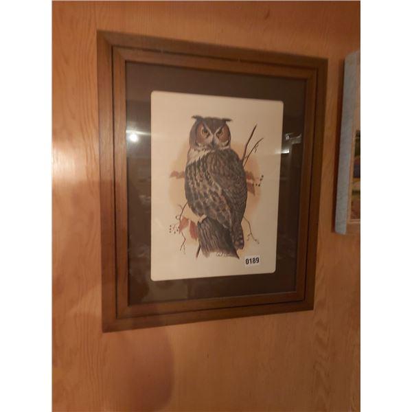 "Owl Picture - Artist Paul C. Connor 19.5""W 23.5""H"