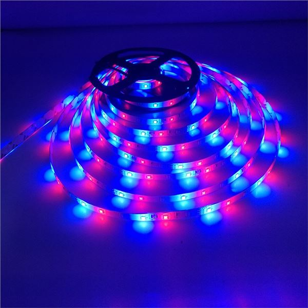 NEW LED LIGHT STRIP KIT WITH REMOTE