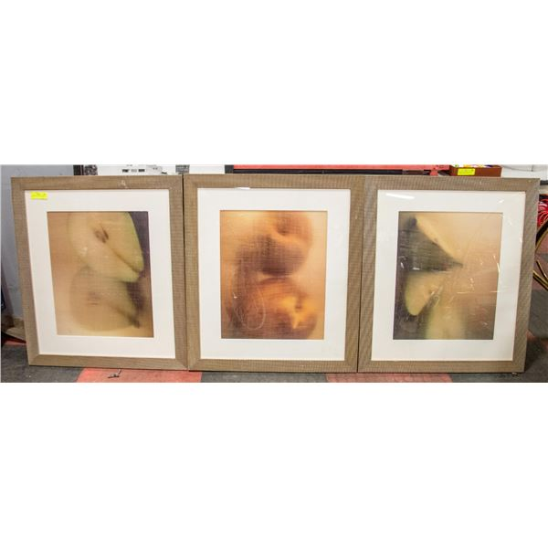 """3 MATCHING PICTURES APPROX 30"""" X 26"""""""