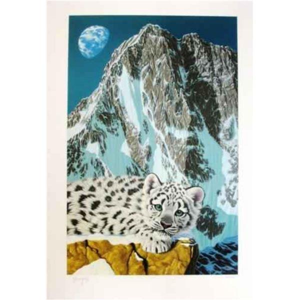 "Schimmel ""Snow Leopard"""