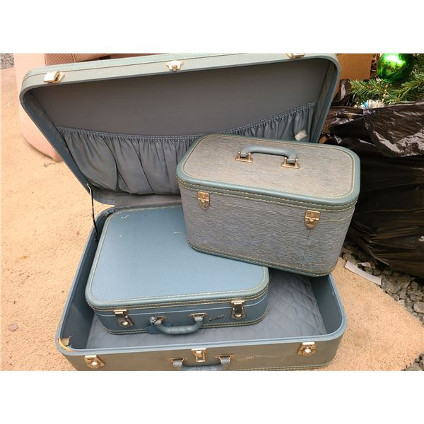 Vintage Luggage Cat A