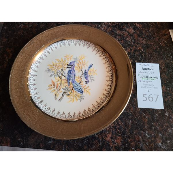 Nautilus Gold Banded Plate. Cat A