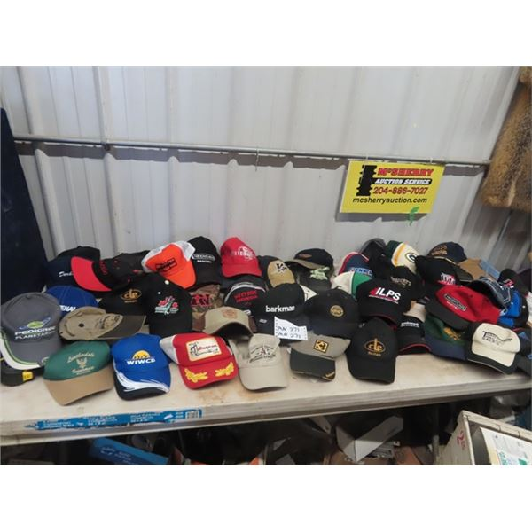 (MN) Over 50 Hats, Buinesses, Product, & Places on Them