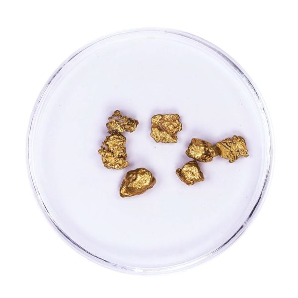 Lot of Gold Nuggets 2.65 grams Total Weight