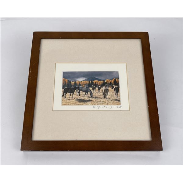 Signed and Numbered Montana Horse Print