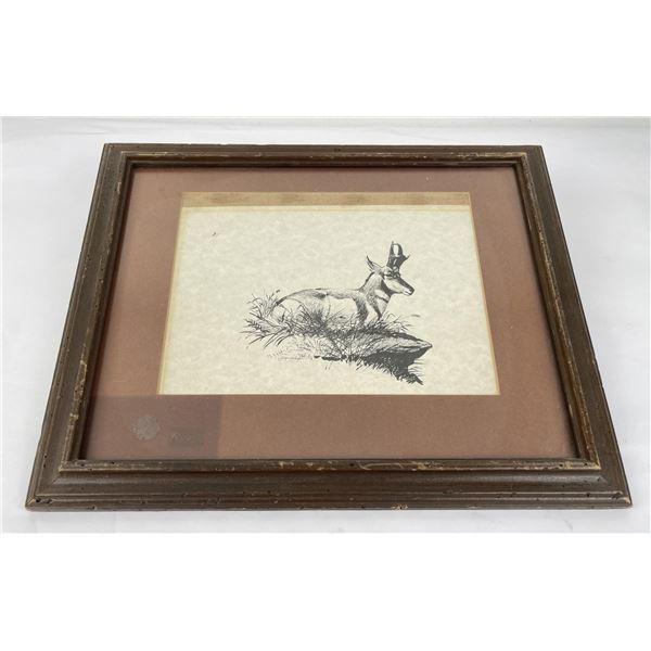 Elmer Sprunger Montana Antelope Drawing
