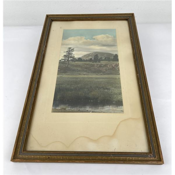 Antique Hand Tinted Photo