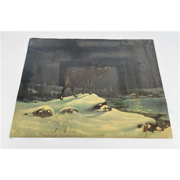 Antique Call of the Night Elk Print