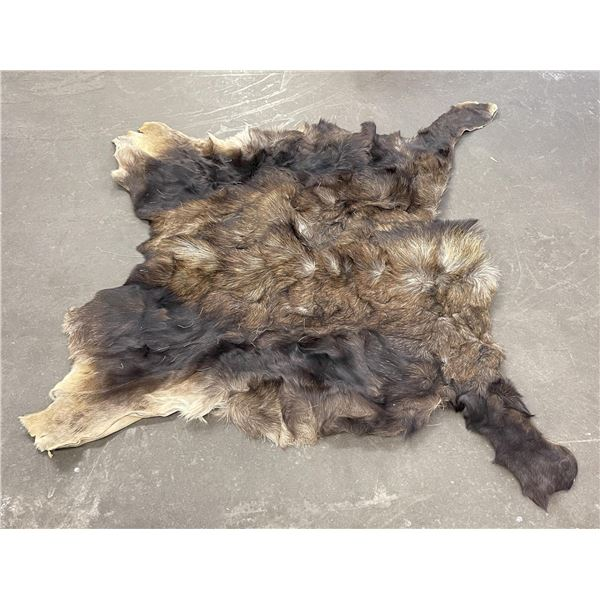 Large Taxidermy Montana Moose Hide Leather