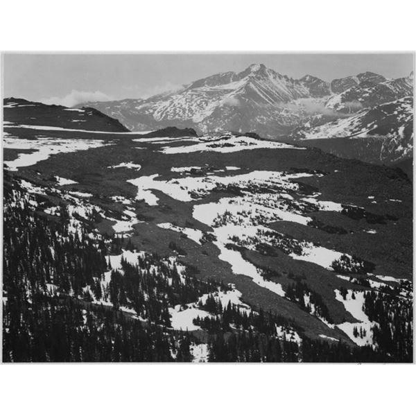 Adams - Rocky Mountain National Park Colorado