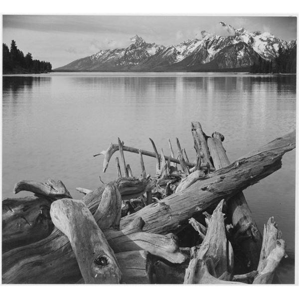 Adams - Jackson Lake in Grand Teton Wyoming