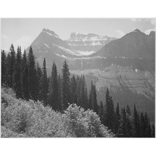 Adams - Glacier National Park Montana 3