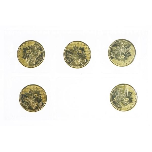 RCM 2016 The Lucky Loonie 5 Pack Dollar Coins  UNC
