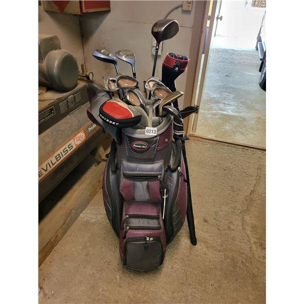 14 Assorted Golf Clubs - Golf Bag - Umbrella