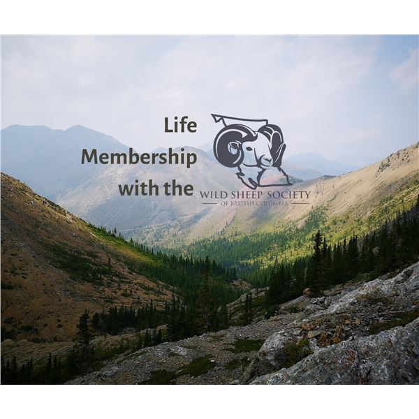 Wild Sheep Society of BC Life Membership