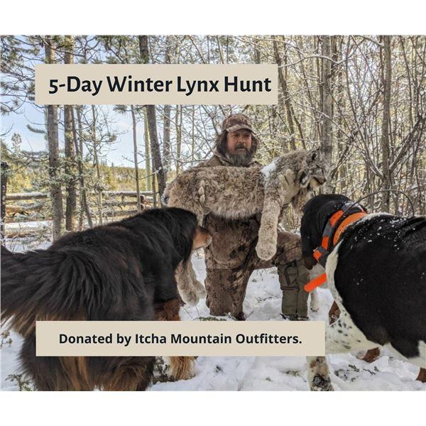 5-Day Winter Lynx Hunt