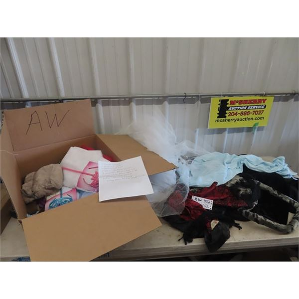 Box of Hallween Costumes, Details in Last Pic, & Cushion for Lounge Chair