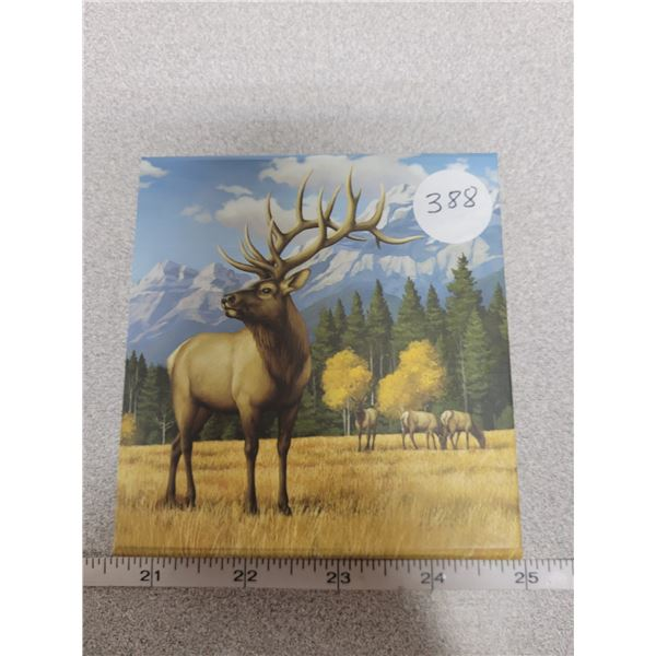 2016 - $100.00 for $100.00 - Noble Elk