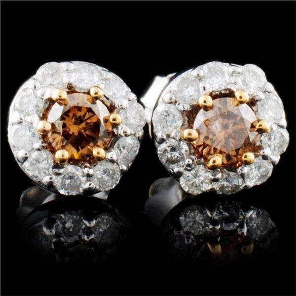 14K White Gold 0.91ctw Fancy Color Diamond Earring