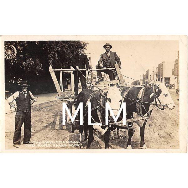 The Horseless Carriage Thief River Falls, Minnesota Photo Postcard