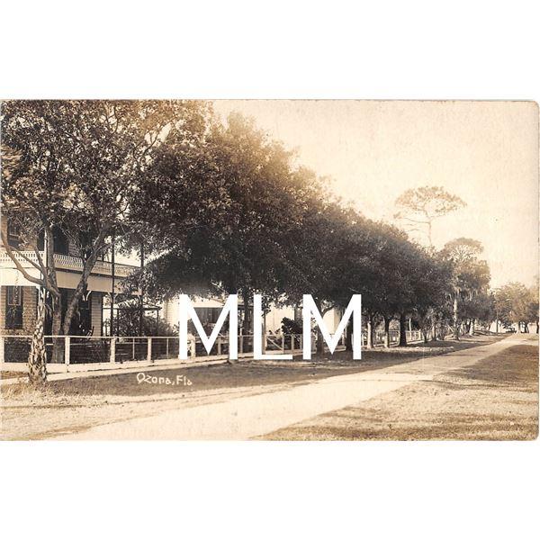 Residental Street Scene Ozona, Florida Photo Postcard
