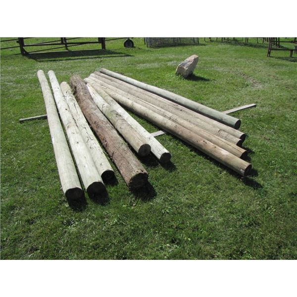 treated posts 12 foot by 6 in plus four miscellaneous posts... x7
