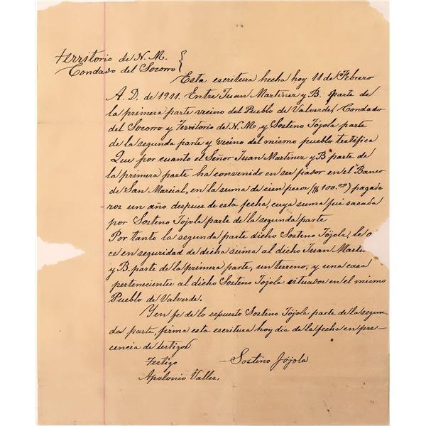 Handwritten NM Territory Letter in Spanish  [127993]