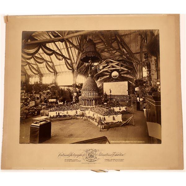 Photo of Centennial International Exhibition  [139230]