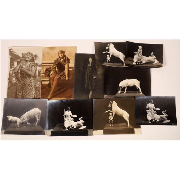 Historic Animal Trainer Photographs  [139308]