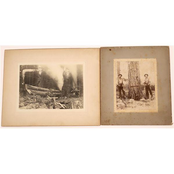 Vintage Logging Photographs  [139322]