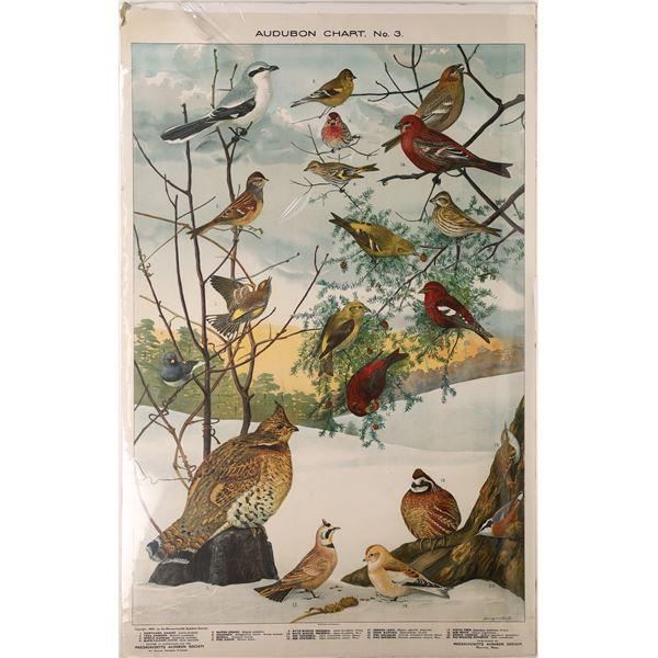Bird Identification by Audubon - Church and Dwight Co.   [139729]