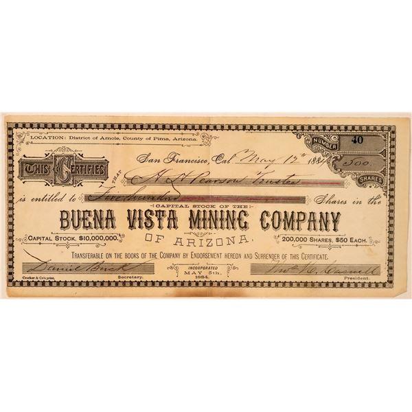 Buena Vista Mining Co. of Arizona Stock Certificate  [107746]