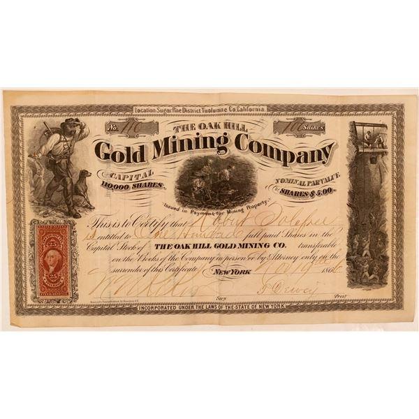 Oak Hill Gold Mining Company Stock Certificate  [107709]
