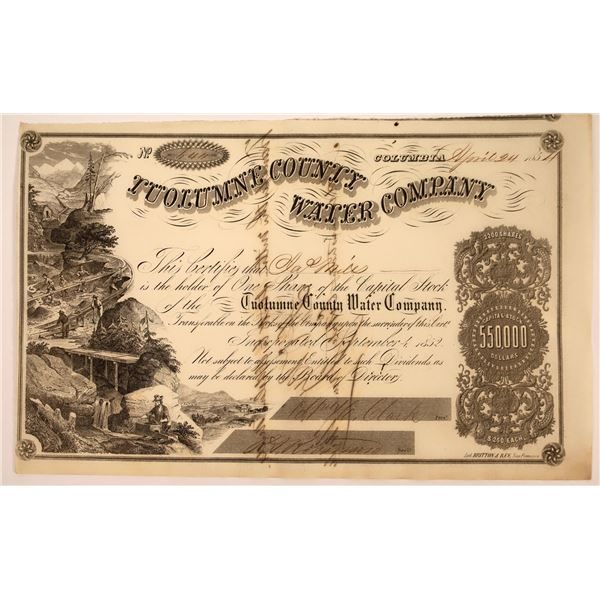 Tuolumne County Water Co. Stock Signed by D. O. Mills  [130247]