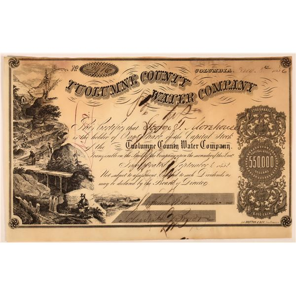 Tuolumne County Water Co. Stock Signed by D. O. Mills  [130242]